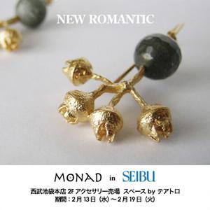 Seibu_pop