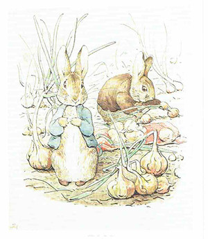 Peterrabbit_2
