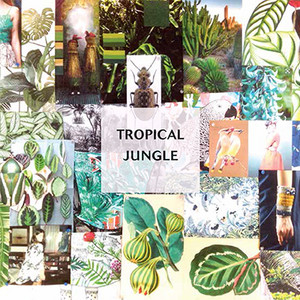 Tropicaljungle