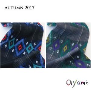 Ayame_201708_4