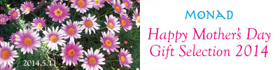 2014_mothersday_banner