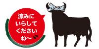 Toro_2016natsu_4