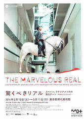 The_marvelous_real_1
