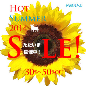 2014_summer_sale_pop2