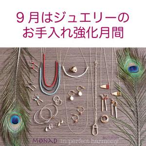 Monad_autumn17