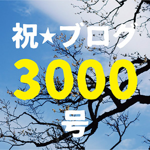 Blog3000_400