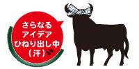 Toro_2016natsu_2